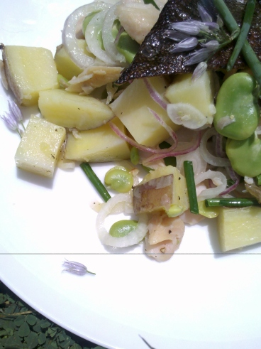 Warm potato salad with smoked trout and podded broad beans