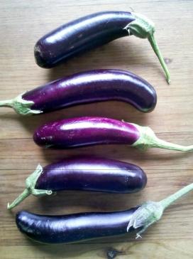 Eggplants from Choku Bai Jo