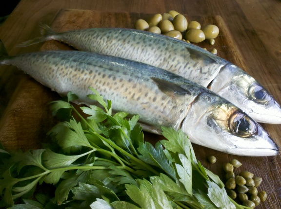 Blue mackeral with parsley, green olives and capers