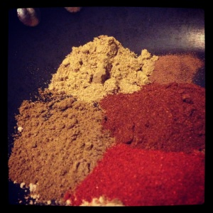 Toasting spices for Rogan Josh