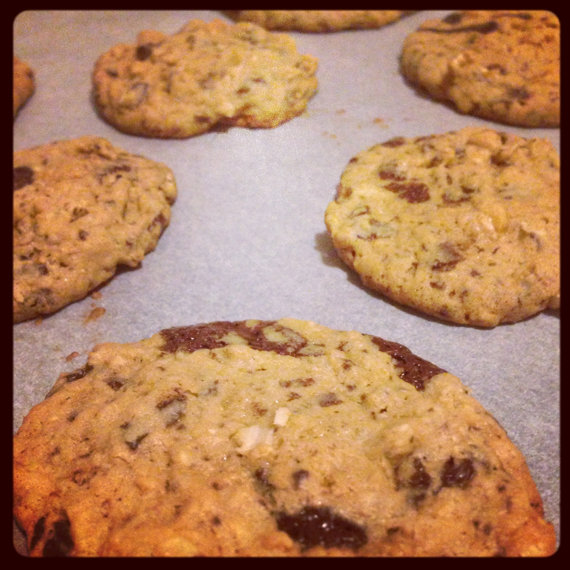 Grown up cookies (with whiskey and dark chocolate) | Susan ...