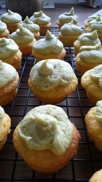 Orange cupcakes with pistachio buttercream
