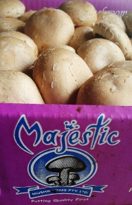 Swiss brown mushrooms from Majestic Mushrooms