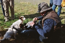 Food rewards for the truffle dogs