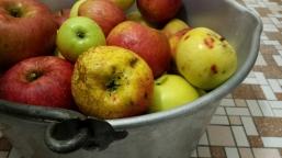 Grandma's jam pot full of wild apples